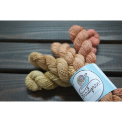 Snailyarn Gradient-Set Autunno